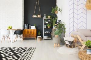 salon avec peinture noire